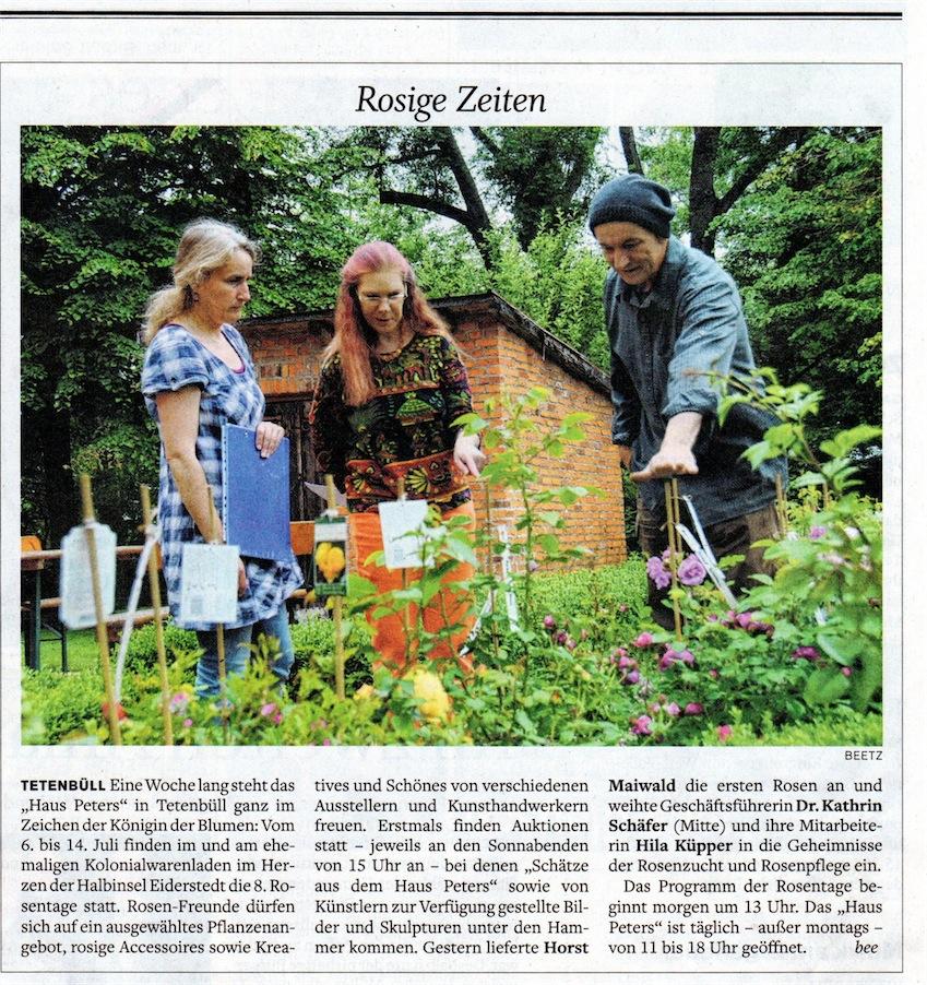 Rosen Maiwald, Rosentage, Haus Peters; Husumer Nachrichten 5.7.2013
